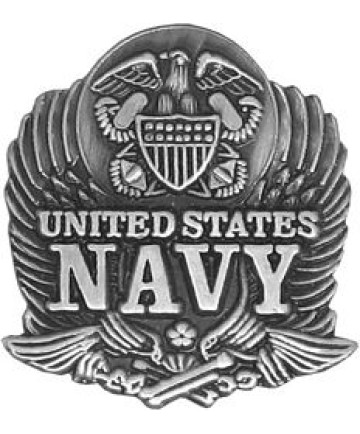 14092 - United States Navy Eagle Pin