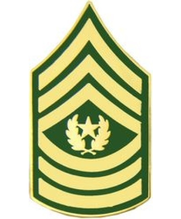 14431 - Army Command Sergeant Major E-9 (CSM) Pin