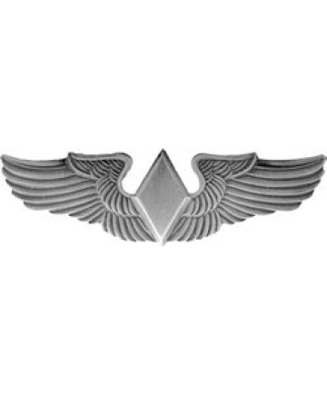 15787 - United States Air Force Wasp Wing Pin