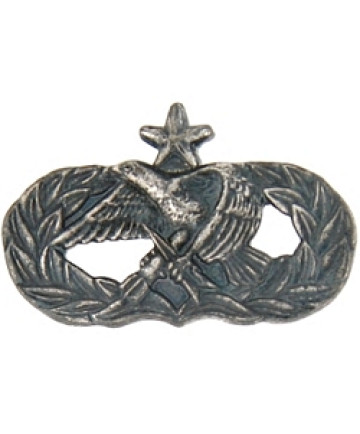 250350 - Air Force Senior Maintenance pin antique silver