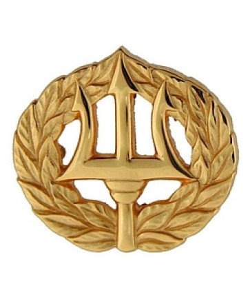 250611 - Navy Command Ashore pin