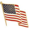 14069 - United States Flag Pin