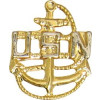 14070 - United States Navy Anchor Pin