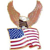 14126 - Eagle & United States Flag Pin