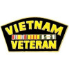 14138 - Vietnam Veteran with Ribbons Pin
