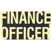 14207 - Finance Officer Script Pin