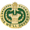 14217 - Drill Instructor Sergeant This We'll Defend Insignia Pin