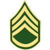 14427 - Army Staff Sergeant E-6 (SSG) Pin
