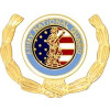 14591 - Army  National Guard Insignia with Wreath Pin