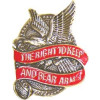 14954 - The Right To Keep And Bear Arms Pin