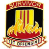 15290 - Survivor Tet Offensive Pin