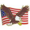 15705 - Eagle and United States Flag Pin