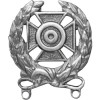 16306ANSI - US Army Expert Qualification Badge