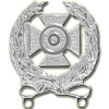 16306SI - US Army Expert Qualification Badge
