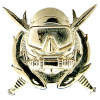 250232 - Special Operations Diver Delta Force Badge