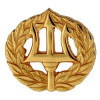 250591 - Navy Command Ashore Insignia - gold