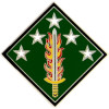 40134 - 20th Support Command Combat Service Badge