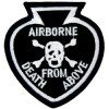 FL1113 - Airborne Death From Above Small Pin