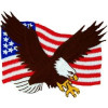 FL1148 - US Flag and Eagle Small Patch