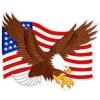 "FLD1186 - United States Flag and Eagle Back Patch(9.5"" x 7"")"