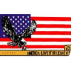 PCF15 - USA - EAGLE 3' X 5' FLAG
