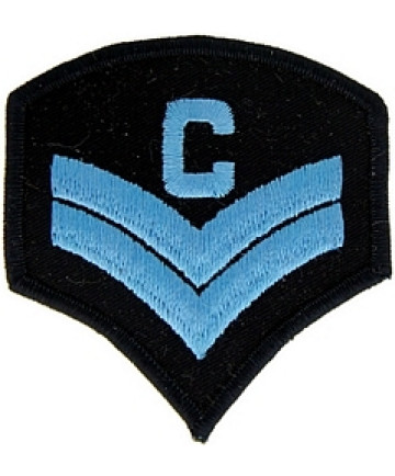 011310 - *PAIR* 'C' CORP - LT BLUE