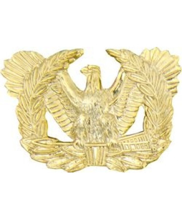 14095 - Warrant Officer Insignia Pin