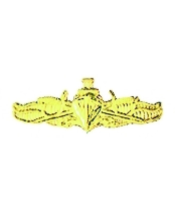 14618 -  US Navy Surface Warfare Officer Pin