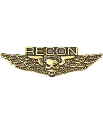 15945 - Reconnaissance (RECON) Wing Pin
