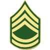 14428 - Army Sergeant First Class E-7 (SFC) Pin