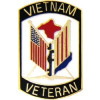 14874 - Vietnam Veteran Pin