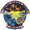 FL1230 - US Navy Seals Small Patch