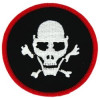 FL9 - Skull Small Patch